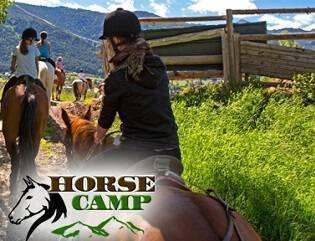 camp rialp Horse camp