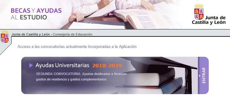 becas 2019 de la consejeria de educacion de castilla y leon