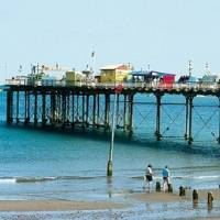 International Projects inglés en Teignmouth