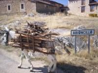 Campamentos Pueblo Escuela Abioncillo