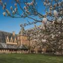 King´s College International ofrece su campamento de verano 2015 con curso de inglés en St Michael's College, en Worcestershire de Inglaterra, Rei