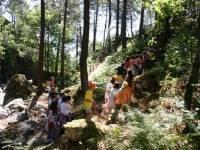 Excursión escolar a Las Dehesas de Cercedilla