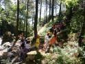 Club campamentos.info ofrece una excursión escolar de 1 día a Las Dehesas de Cercedilla, Comunidad de Madrid, recomendada para grupos escolares de Inf