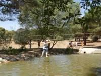Excursión escolar al Pinar de Las Rozas, Madrid