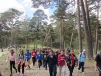 Excursión escolar Senderismo en la Sierra de Madrid