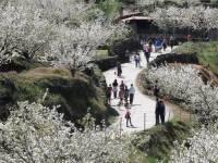 Viaje escolar multiaventura en Valle del Jerte