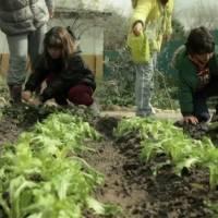 Alea Ocio granja escuela Madrid El Álamo