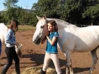 Campamentos ecuestre, multiaventura e inglés de El Colladito