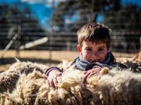 Campamentos granja escuela El Álamo