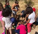 Summer Camp Performing Arts Y Adventure Naturaleza15169797131175